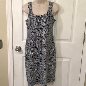 Ann Taylor Striped Dress